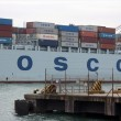 cosco holding co kina